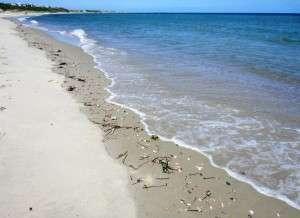 Klikkaa kuvaa nähdäksesi Nantucketin kuvat!
