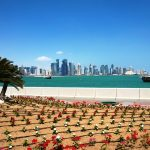 Qatar, Doha ja haukat