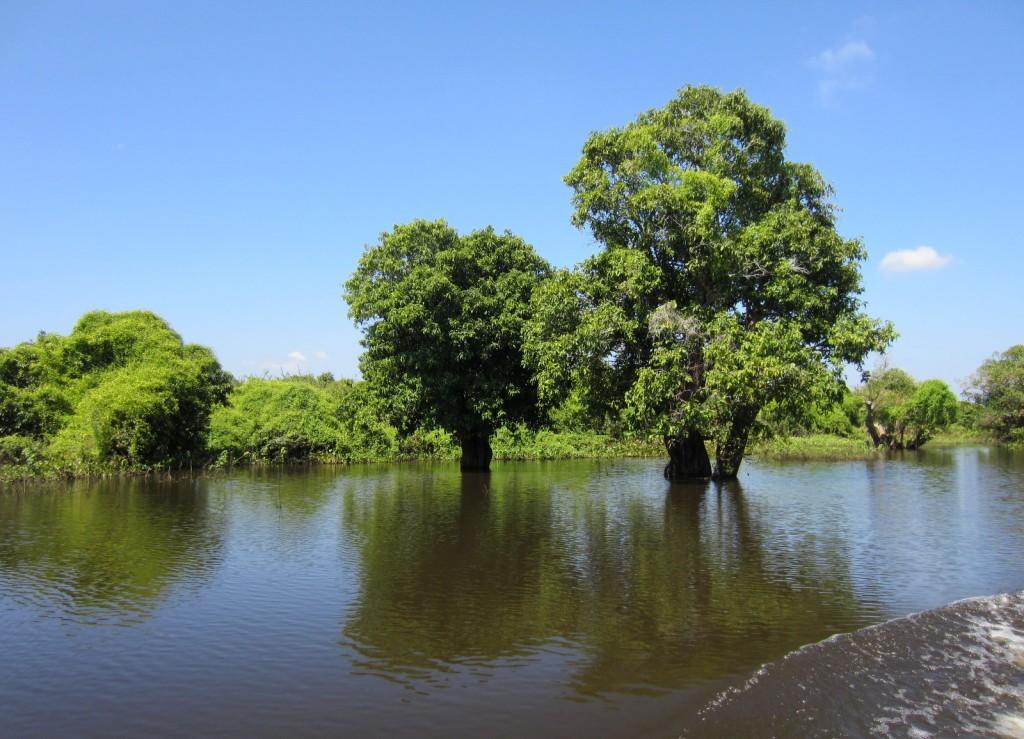 Tonle Sap -järvellä