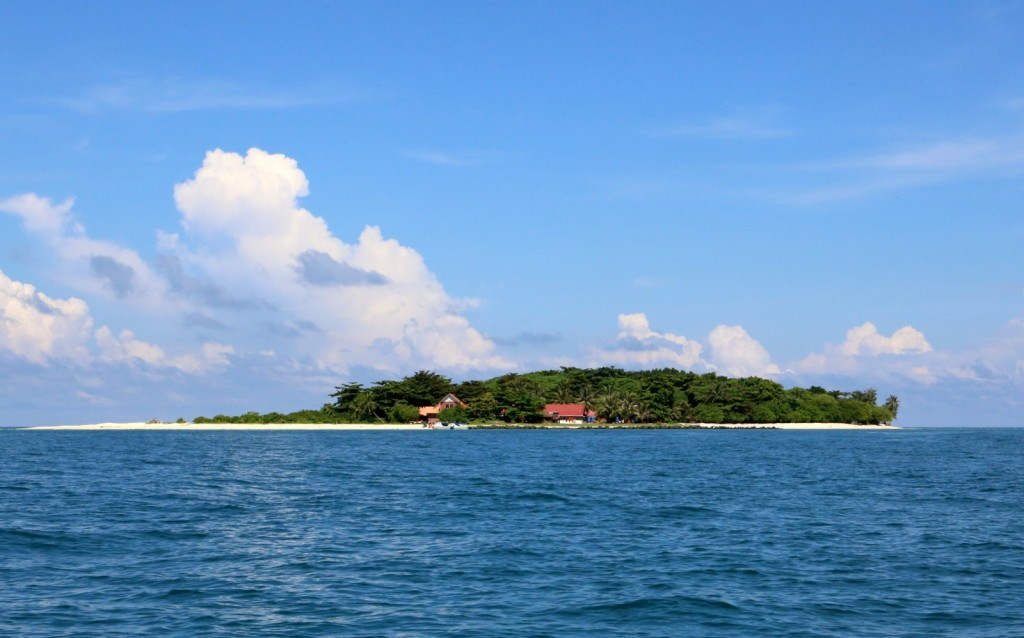 Turtle Island Selingan Island Malaysia