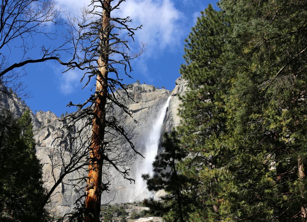 Yosemite waterfalls