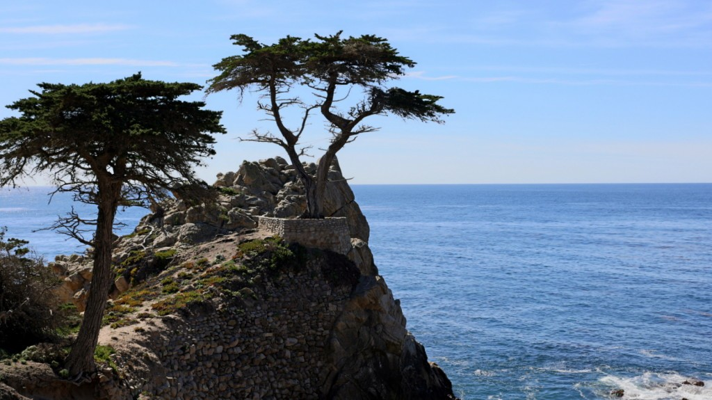 17-Mile Drive The Lone Cypress