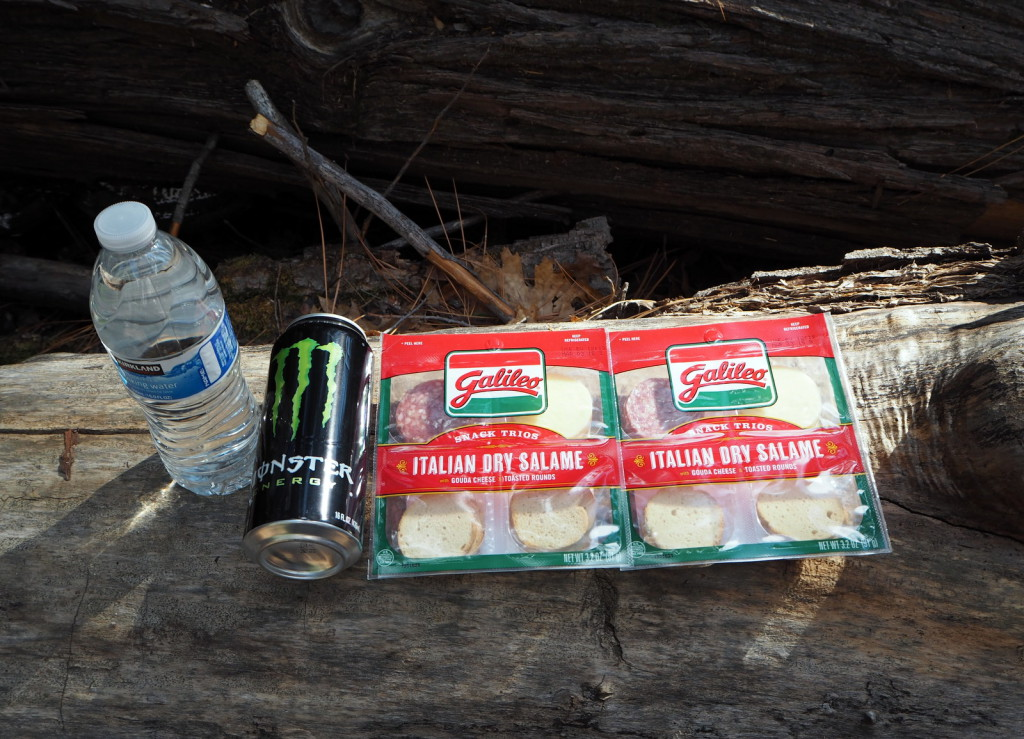 Yosemite picnic lunch
