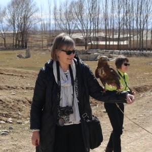 Haukka Issyk-Kul Kirgiisia