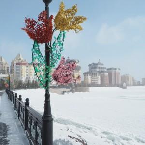 Astana talvikukkia