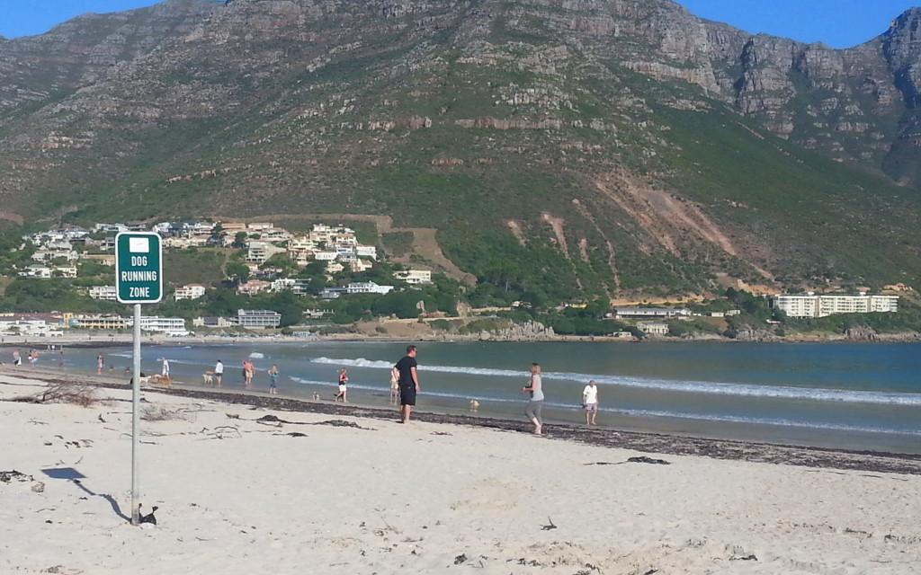 Cape Town beach life