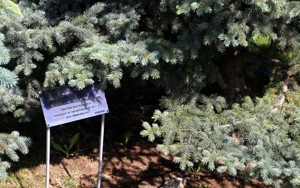 Kansanmurhan muistomerkki Jerevan Armenia Tarja Halonen