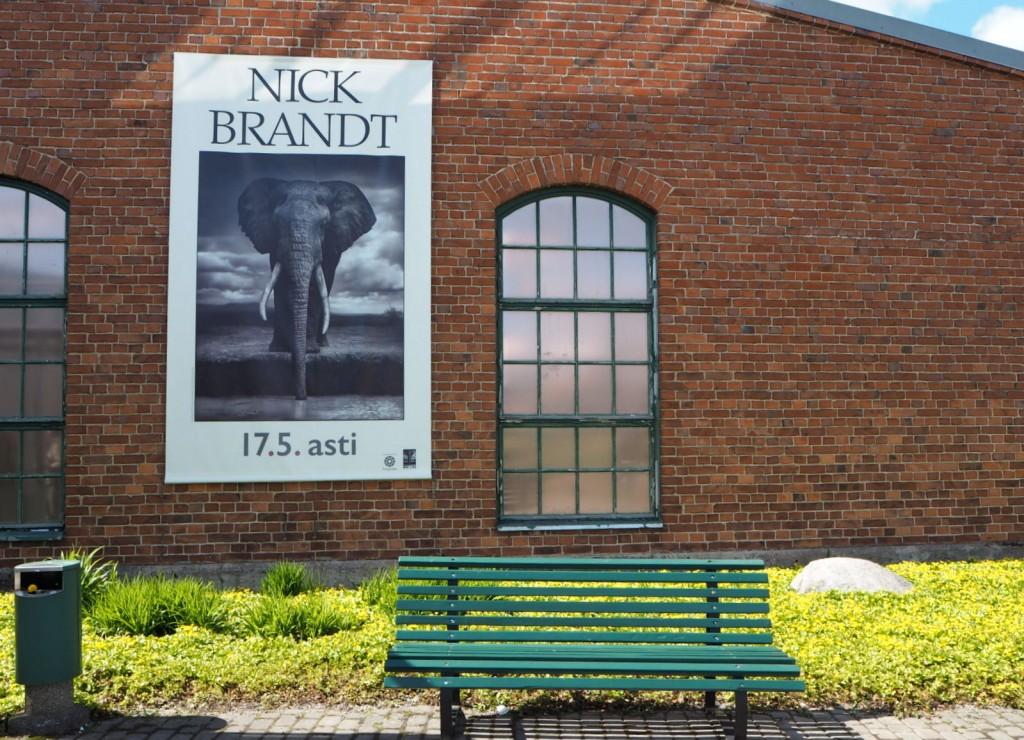 Nick Brandt Salon taidemuseo