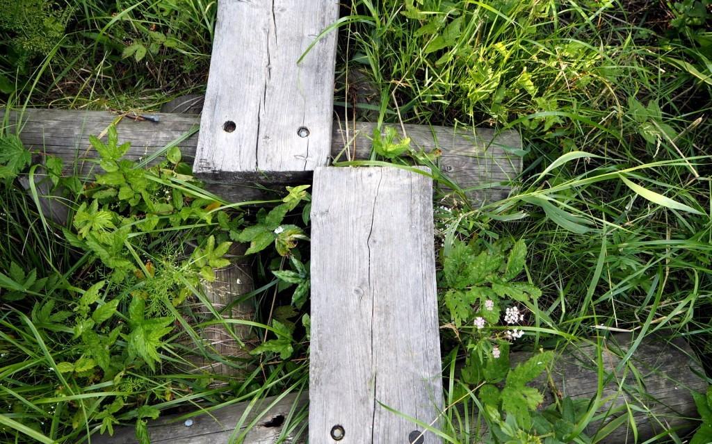 Laajalahti Espoo pitkospuut