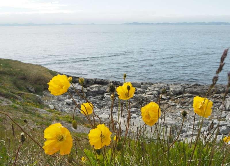 Matkalla Nuukin kotiimme meren rannalla