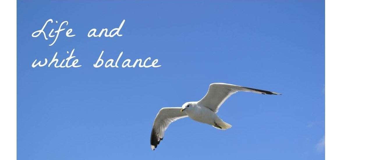 Life and white balance