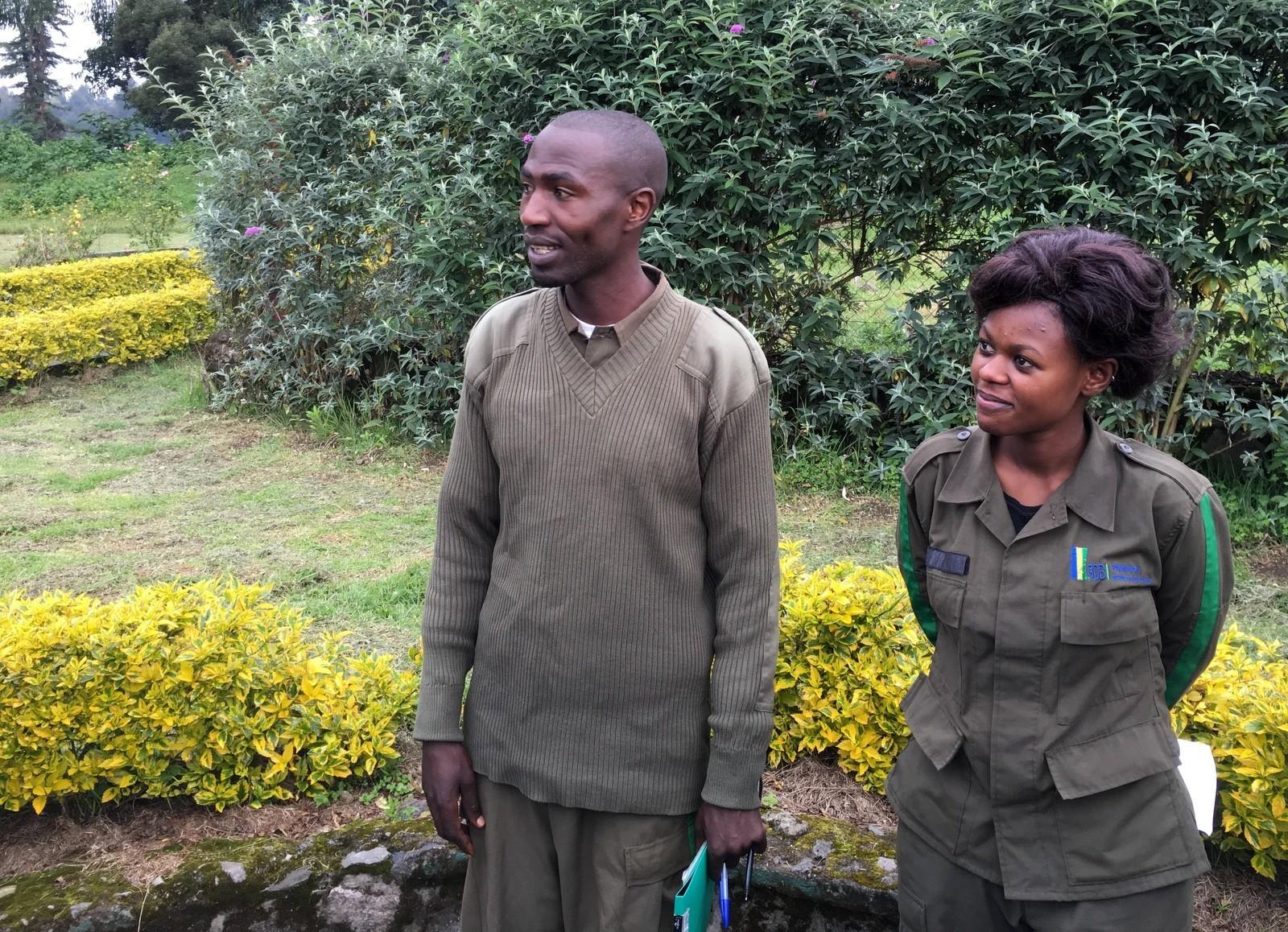 Rwanda mountain gorilla guides