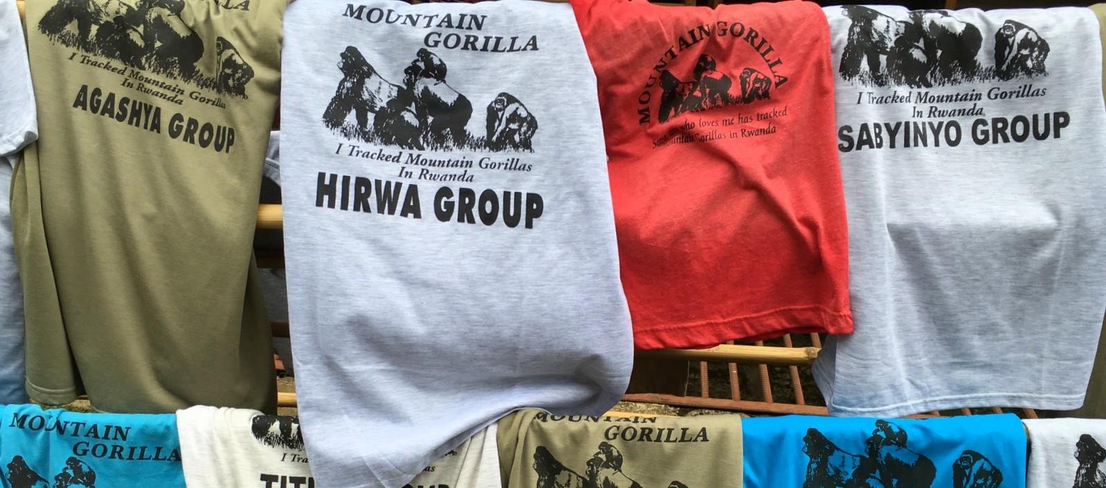 Hirwa gorilla group Rwanda