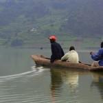 Lintuja Ugandan järvillä