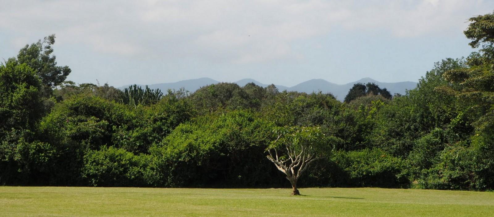 Ngong Hill