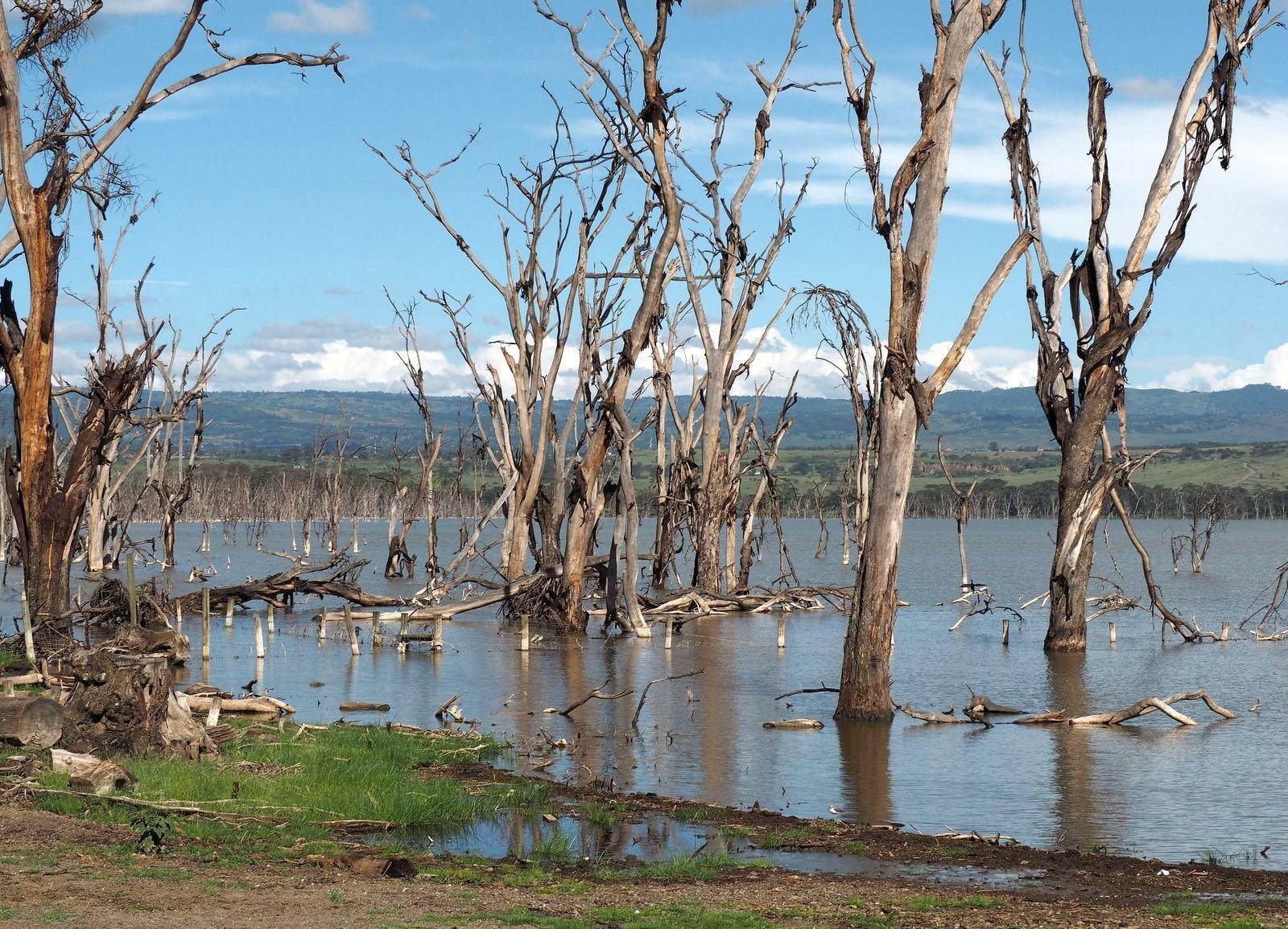 Lake Nakuru Kenia
