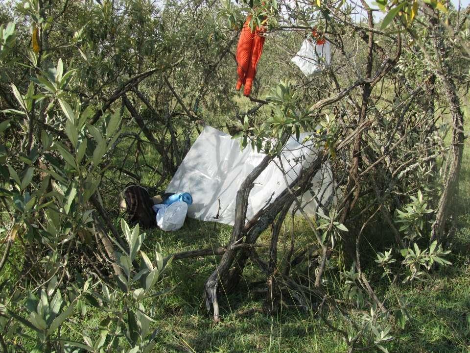 Yöpyminen savannilla (Sari Manninen)