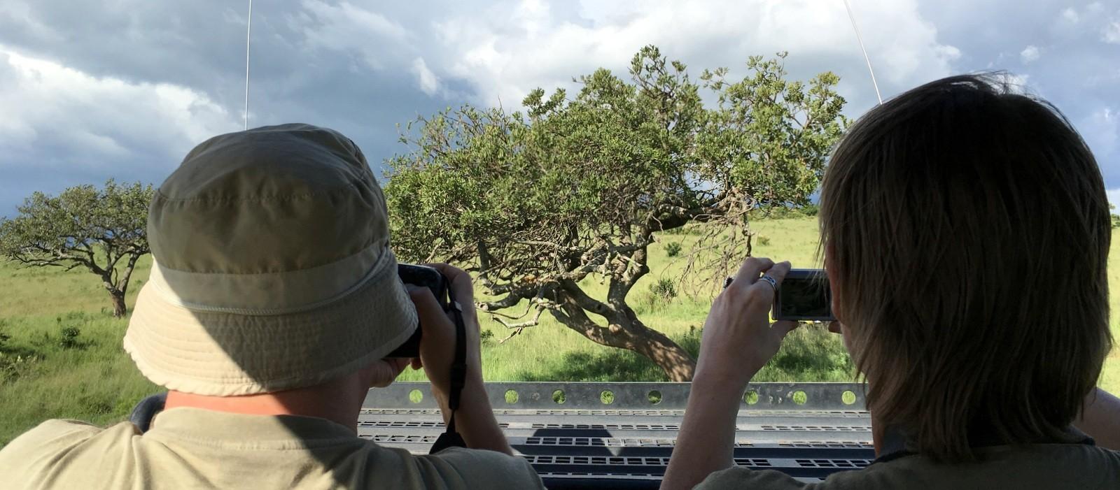 Leopardia kuvaamassa Masai Marassa
