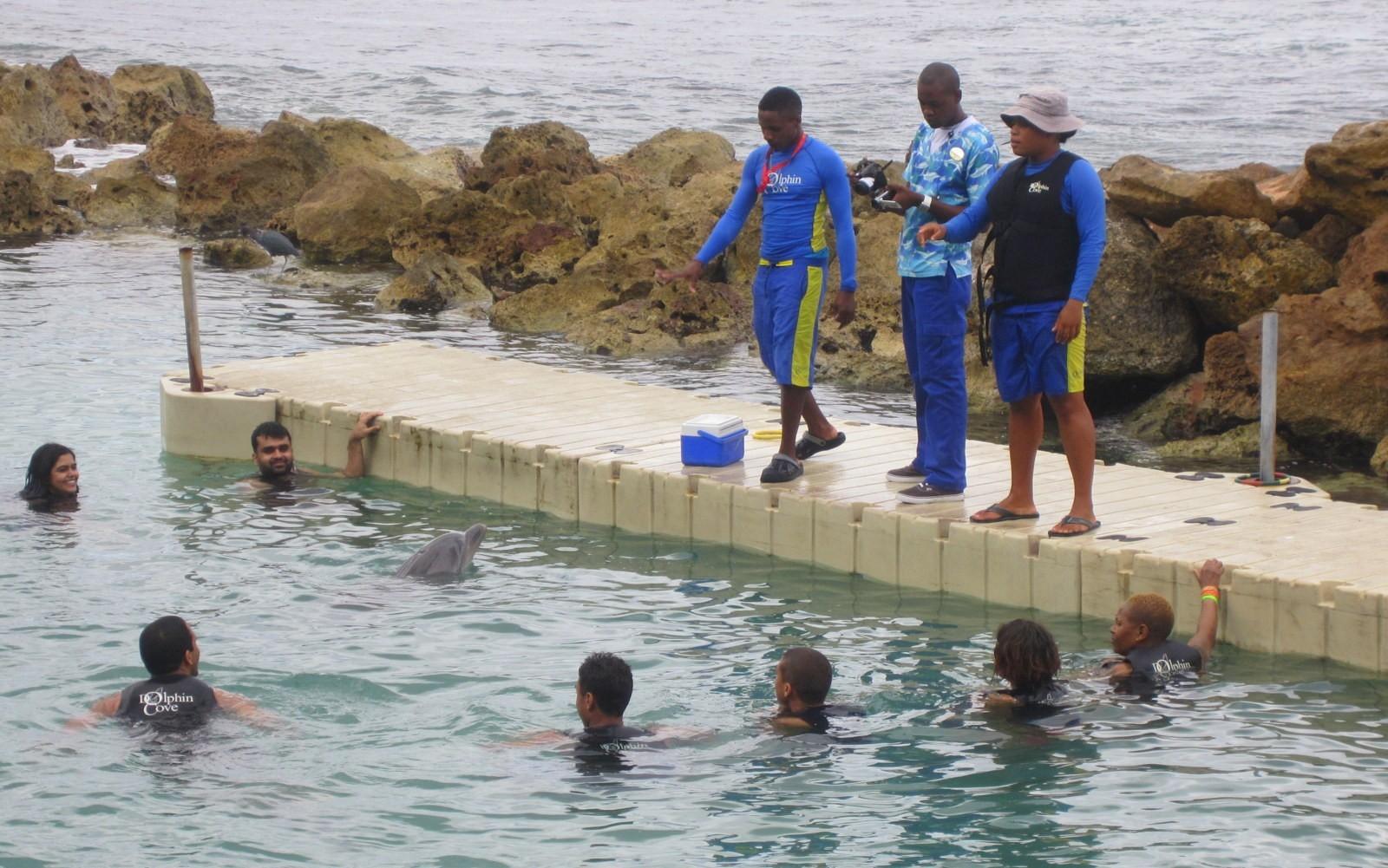 Jamaika Dolphin Cove