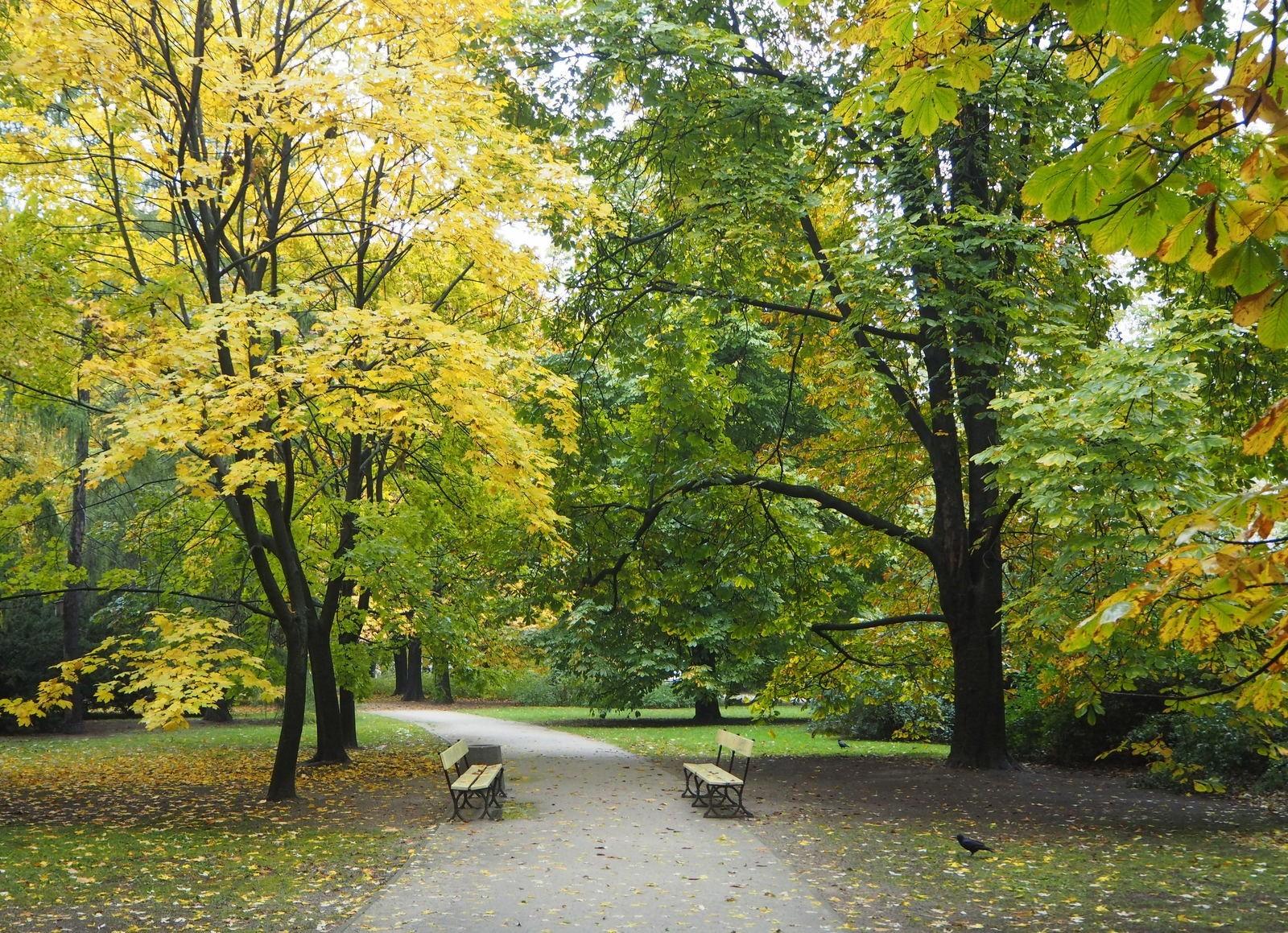 Ruskaa Varsovan puistossa