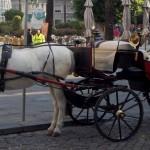 Jerez de la Frontera ilman sherryä