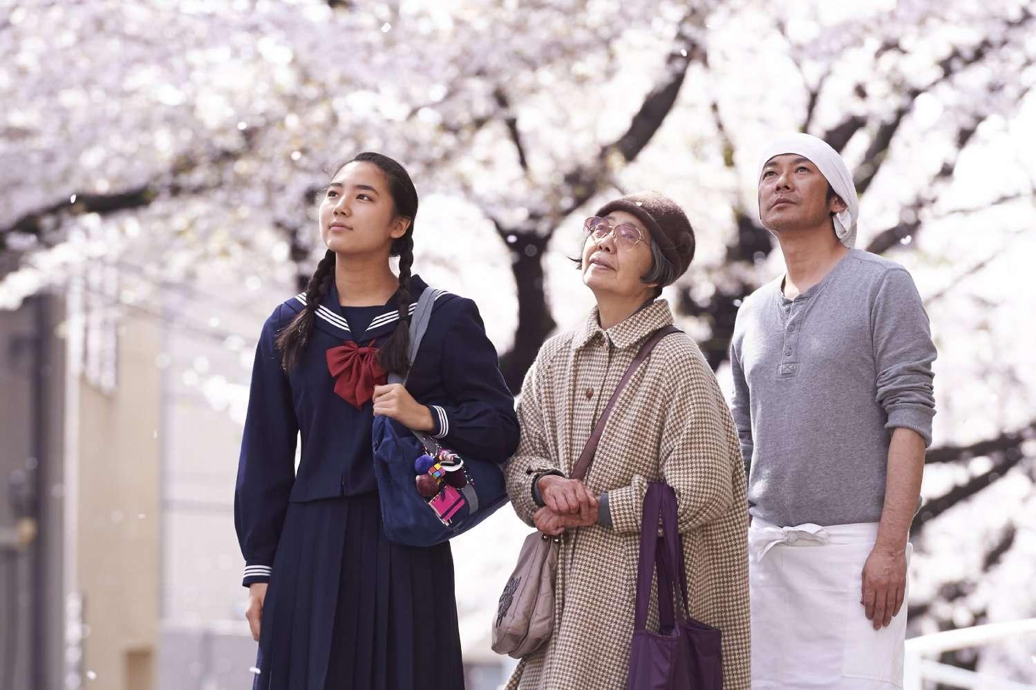 Kirsikkapuiden alla press foto matkaelokuva