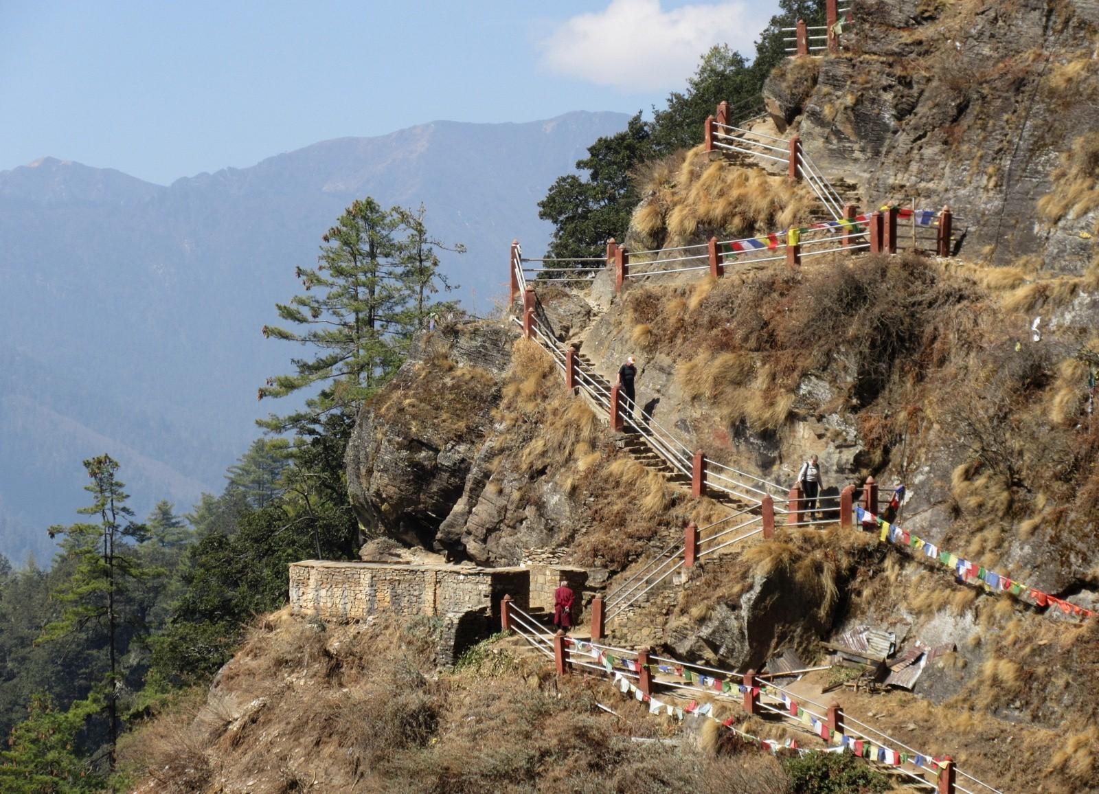 Tiikerinpesä portaita