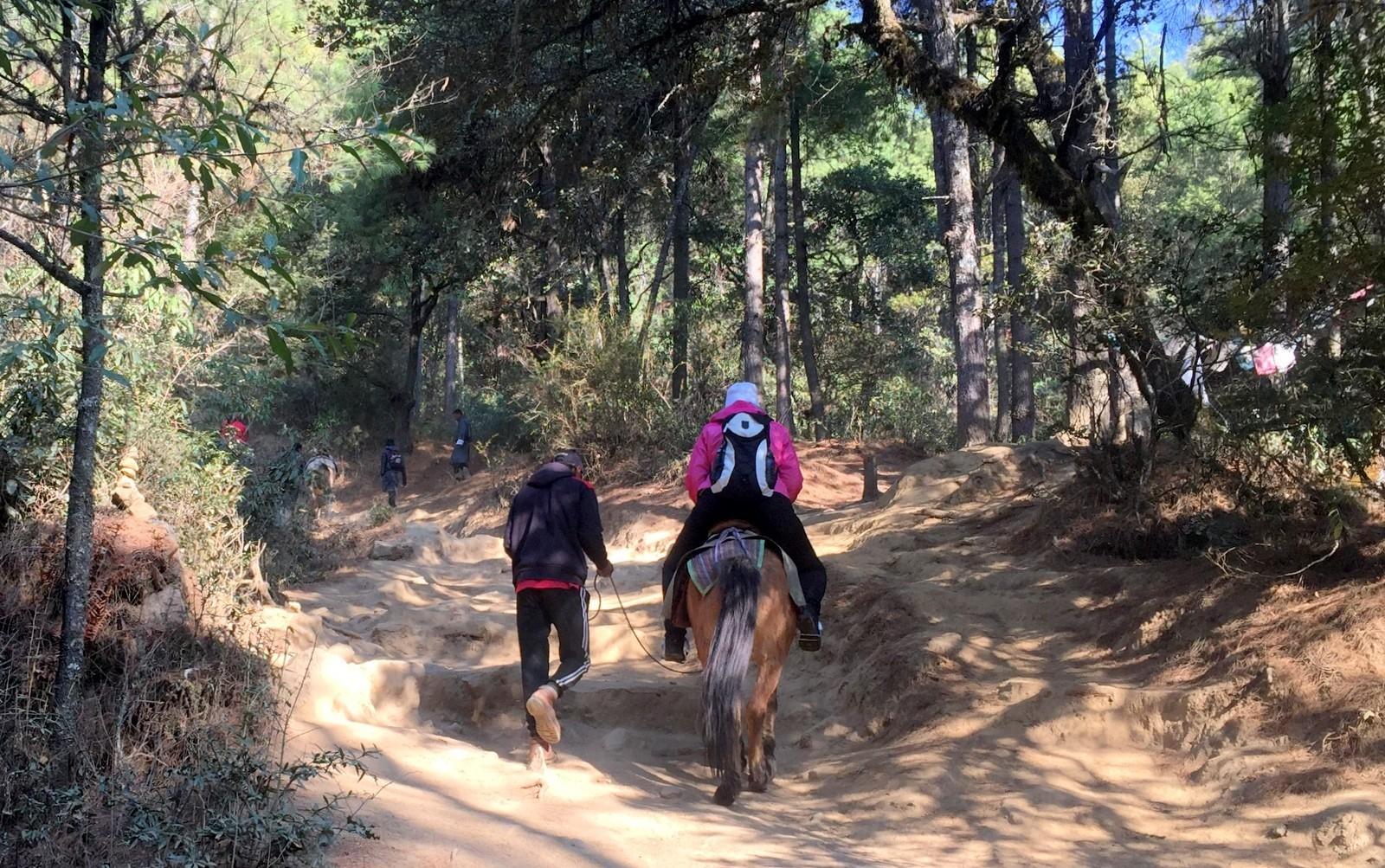 Tiikerinpesä Tiger's Nest horseback