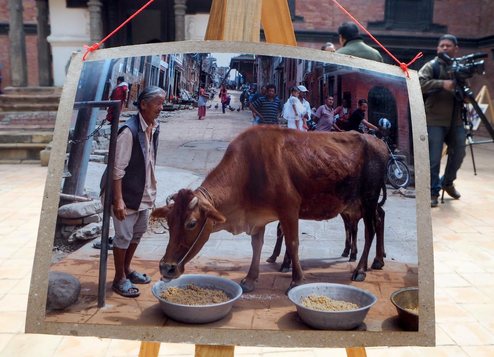 Nepal Patan lasten valokuvanäyttely