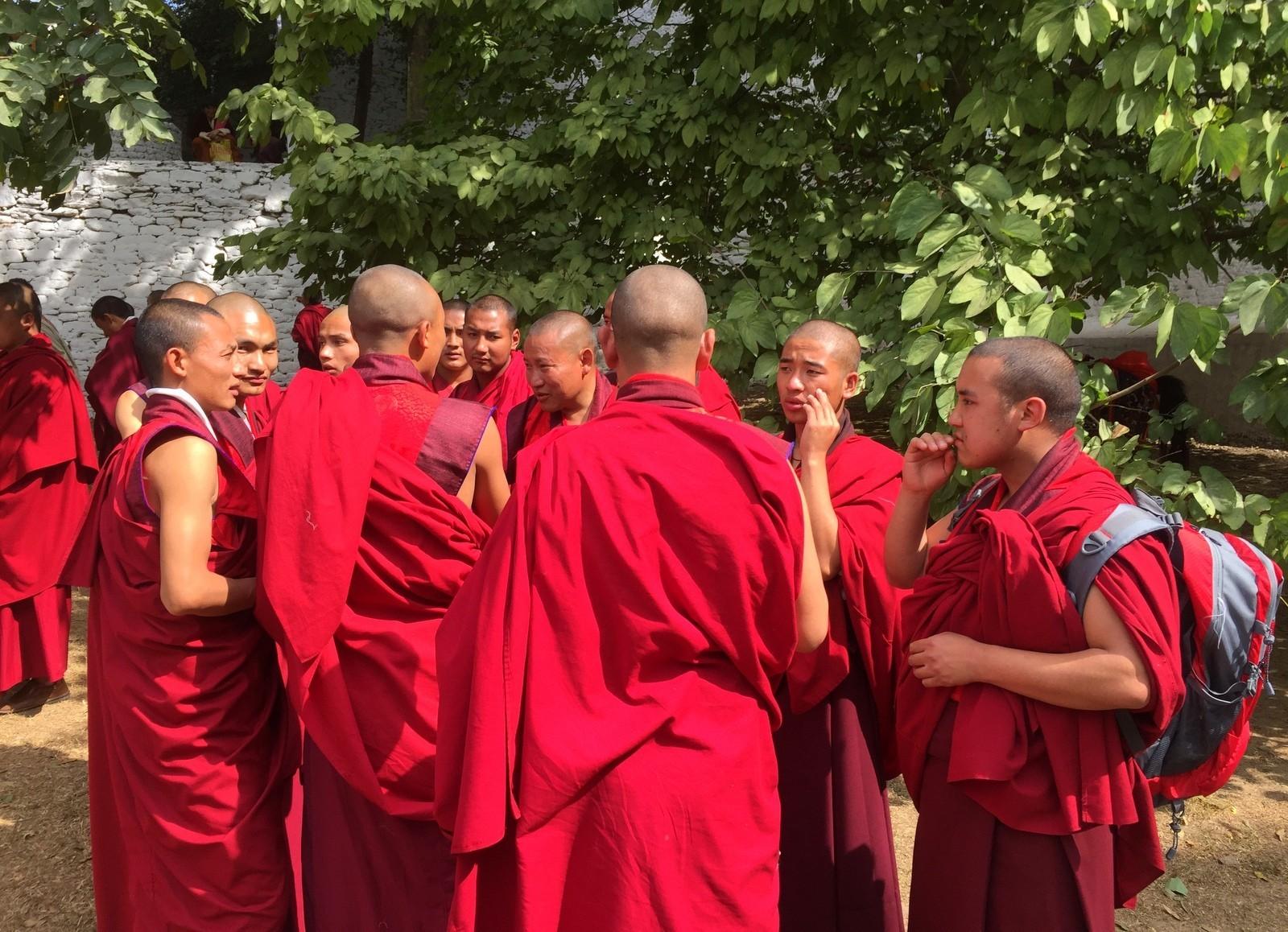 Punakha munkkeja