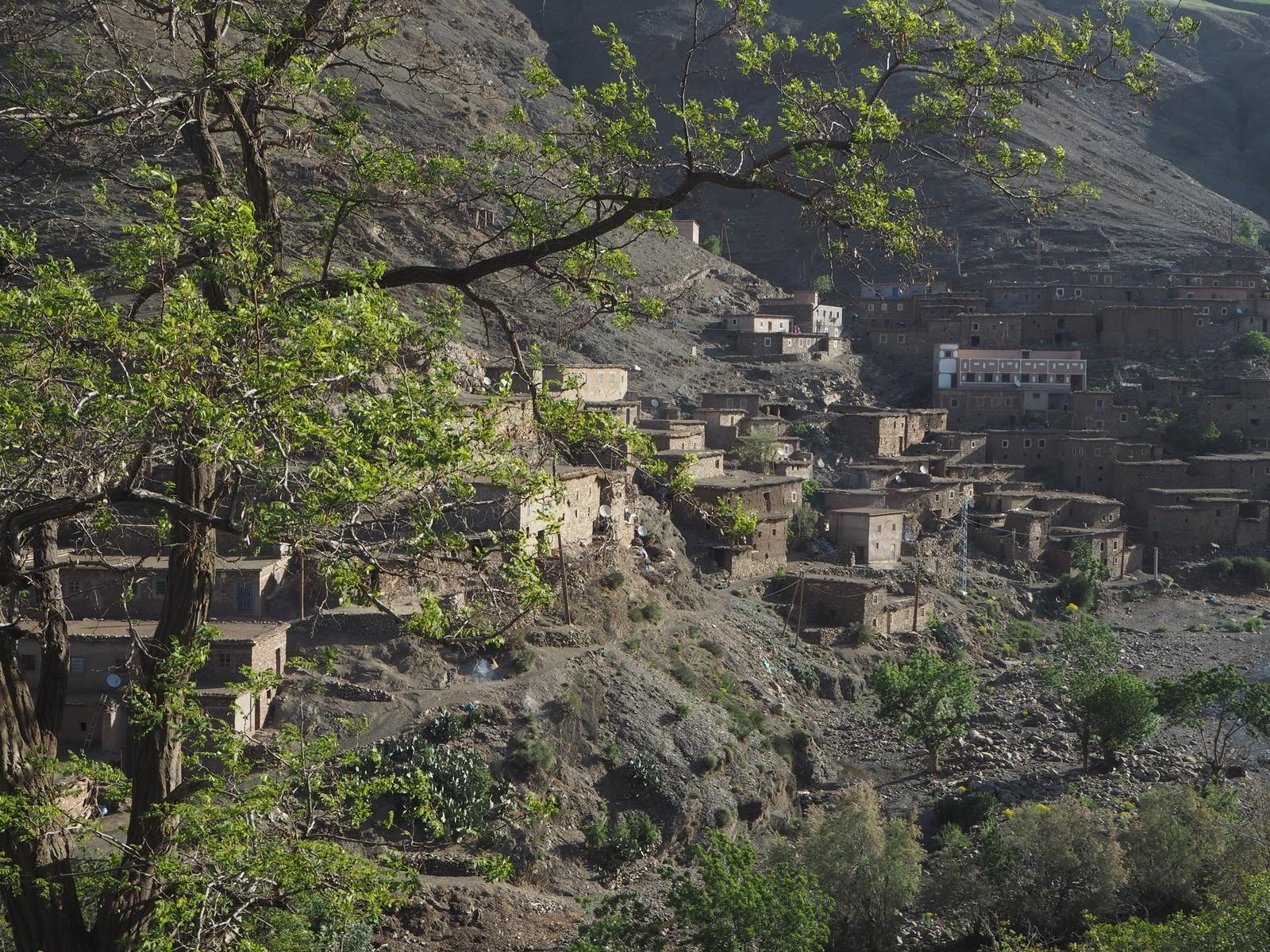 Atlasvuoret berberit