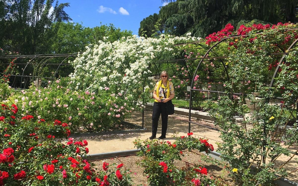 Madrid Parque de Oeste rosegarden - Madrid ruusujen kaupunki
