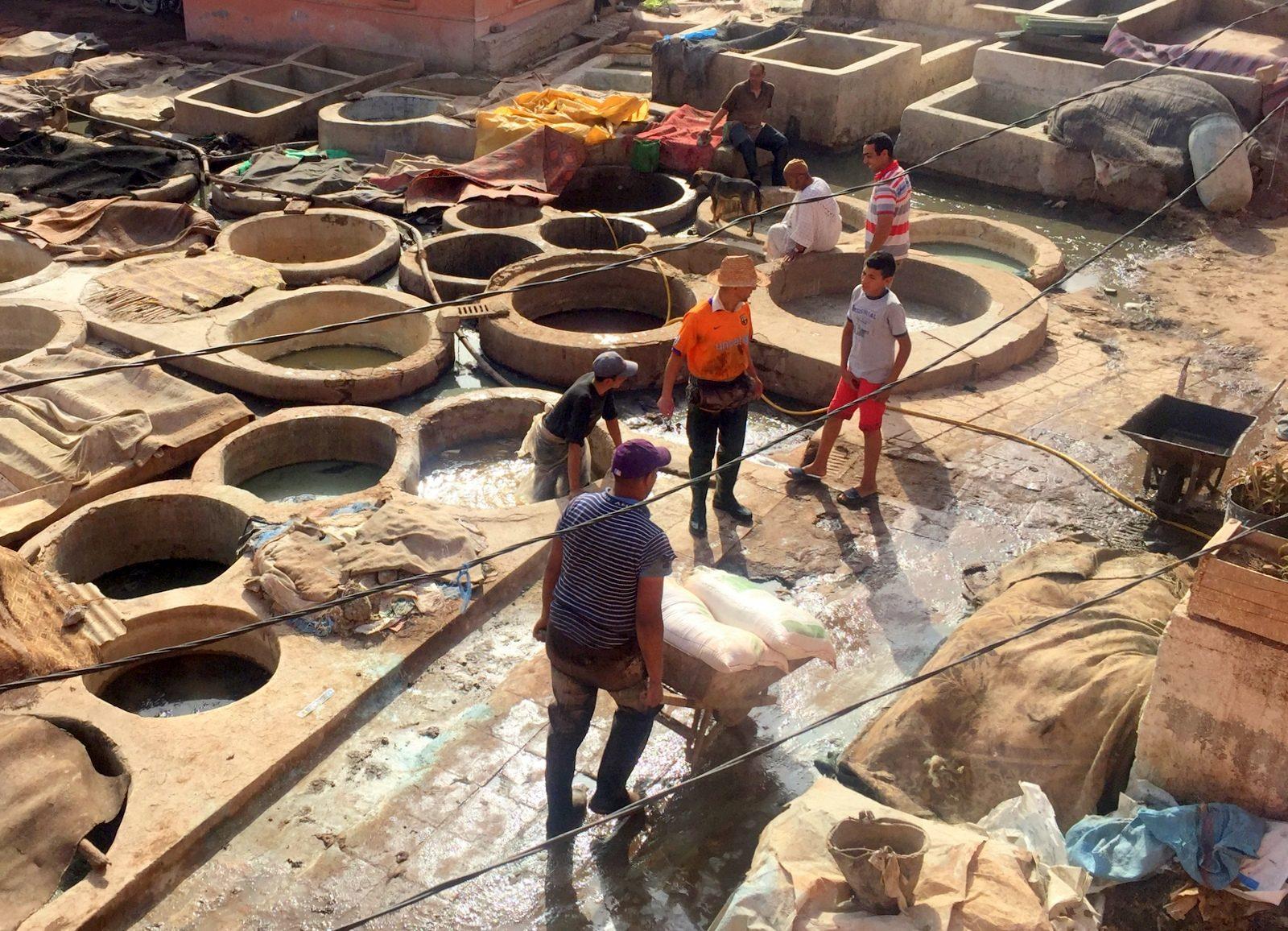 Marrakesh medina Tannery