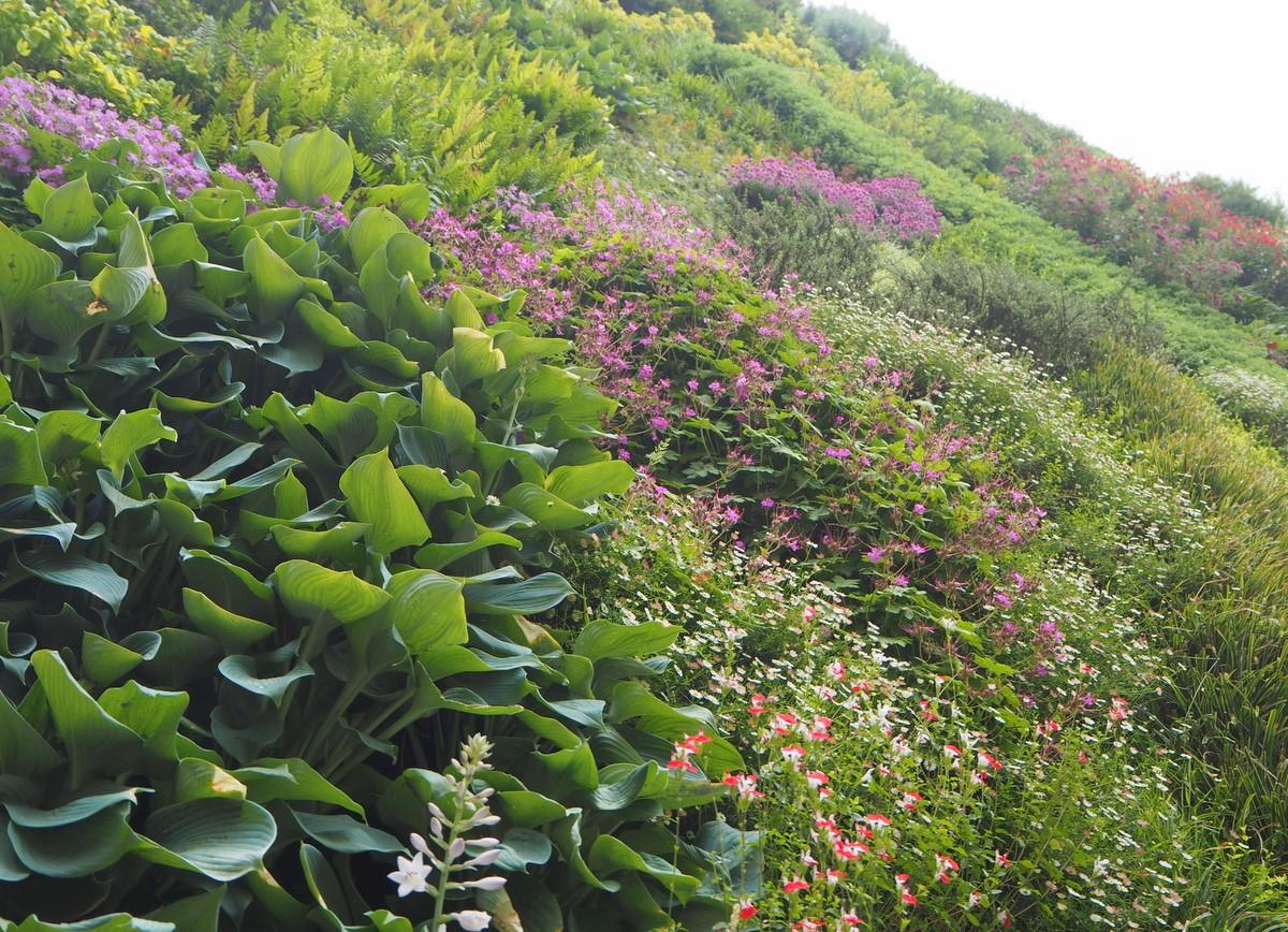CaixaForum Vertical Garden