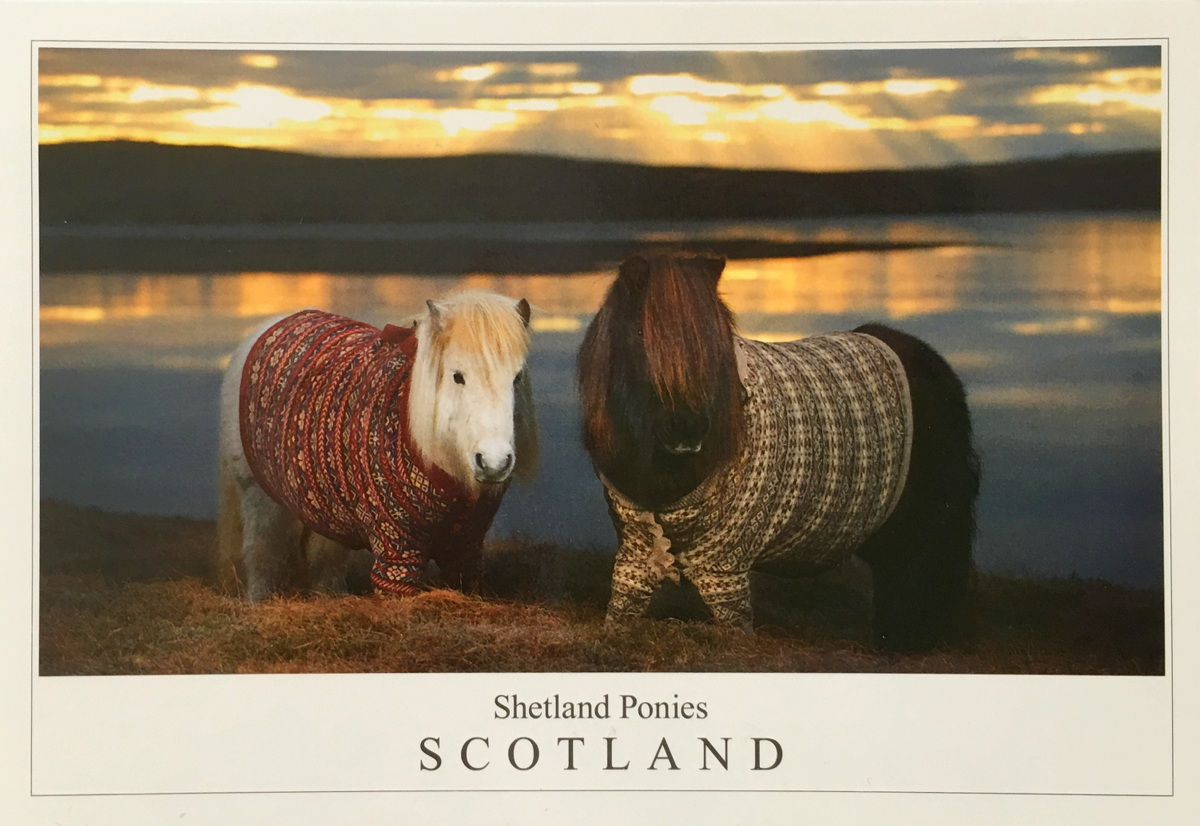 Postcard from Scotland Shetlanninsaaret