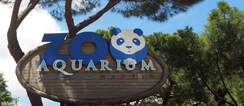 Madrid Zoo feature eläintarha Madrid Korkeasaari