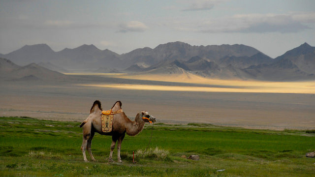 Mongolia Bucket List 2018 ja 2019