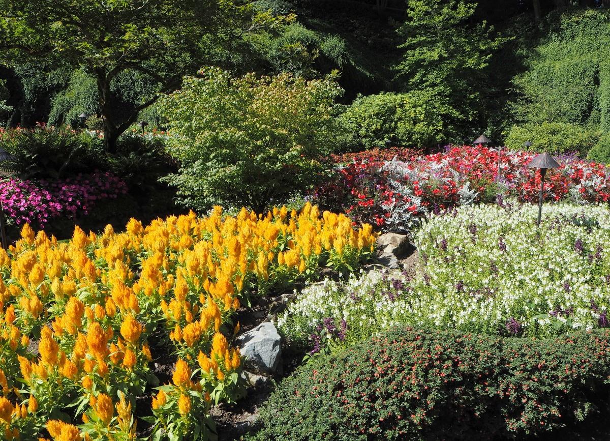 Butchart garden Vancouver Island