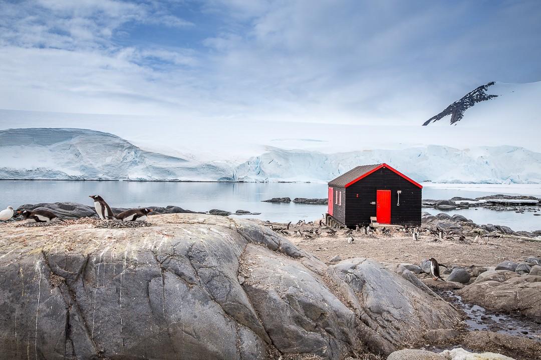 Adalmina's Adventures Antarktika