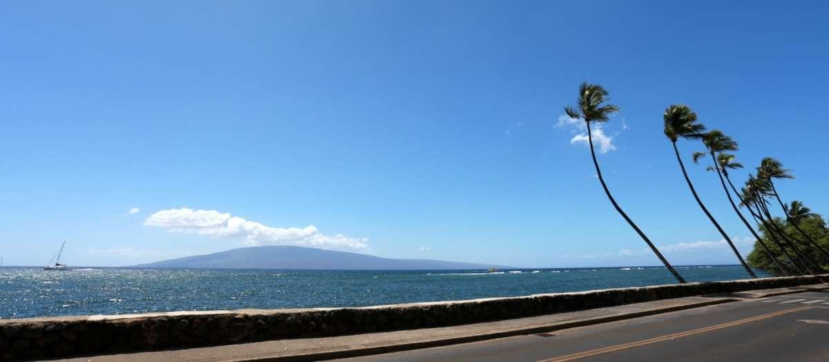 Maui feature