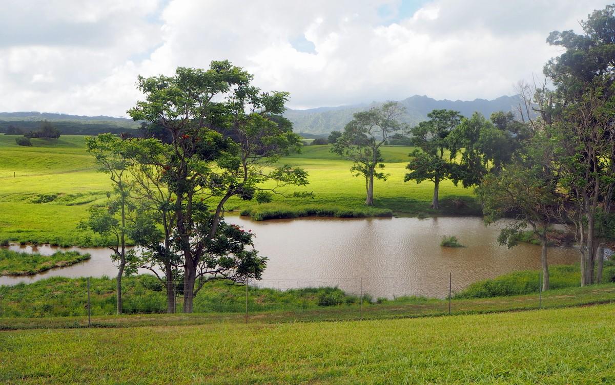 Jurassic Park Kauai Havaiji