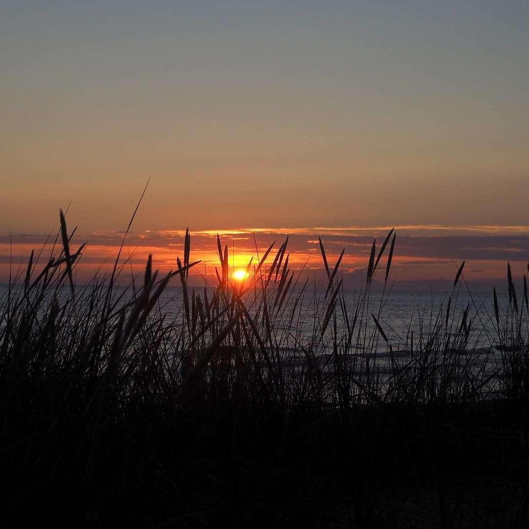 Tofta solnedgång