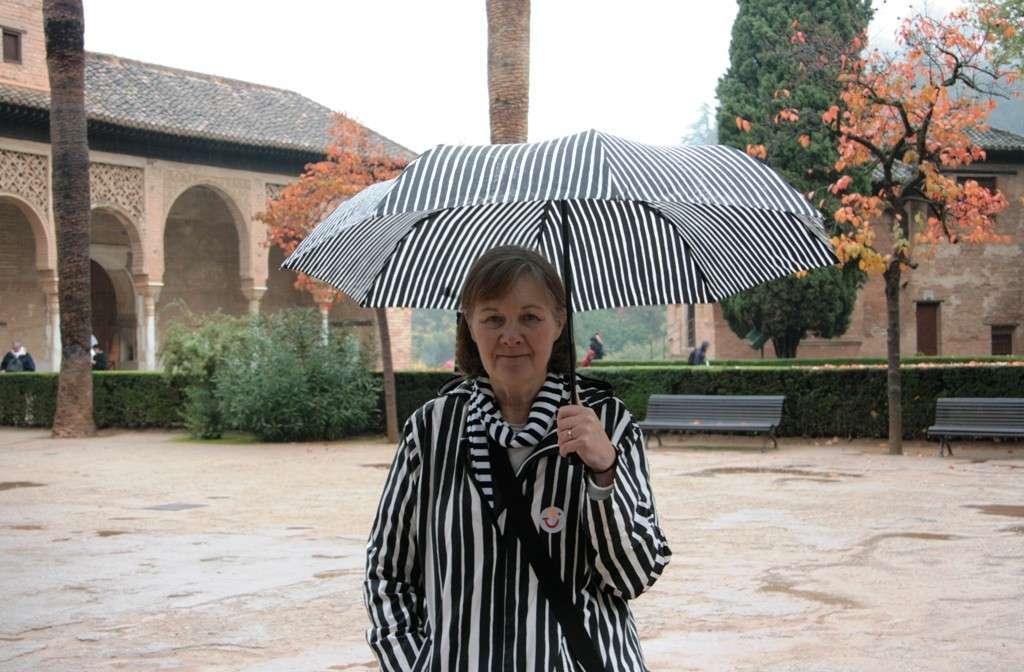 Sateinen Alhambra