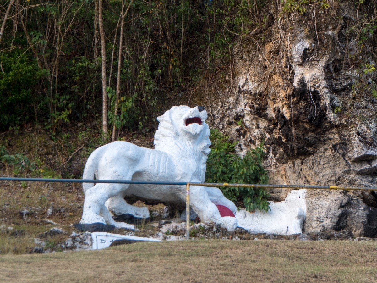 Barbados Lions