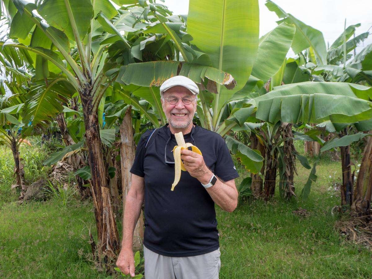 Saint Lucia banaanit Karibian saarikierros