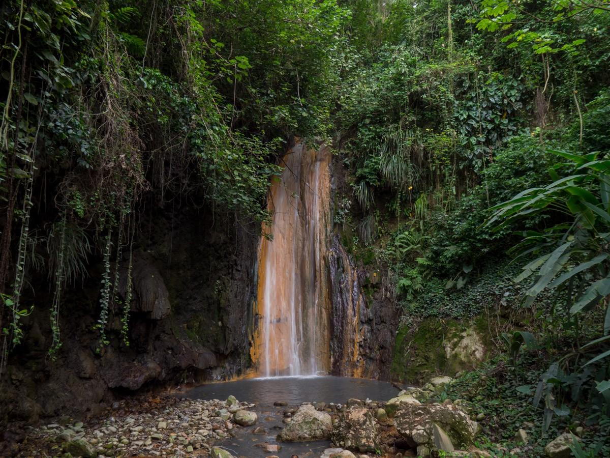Saint Lucia kasvitieteellinen puutarha
