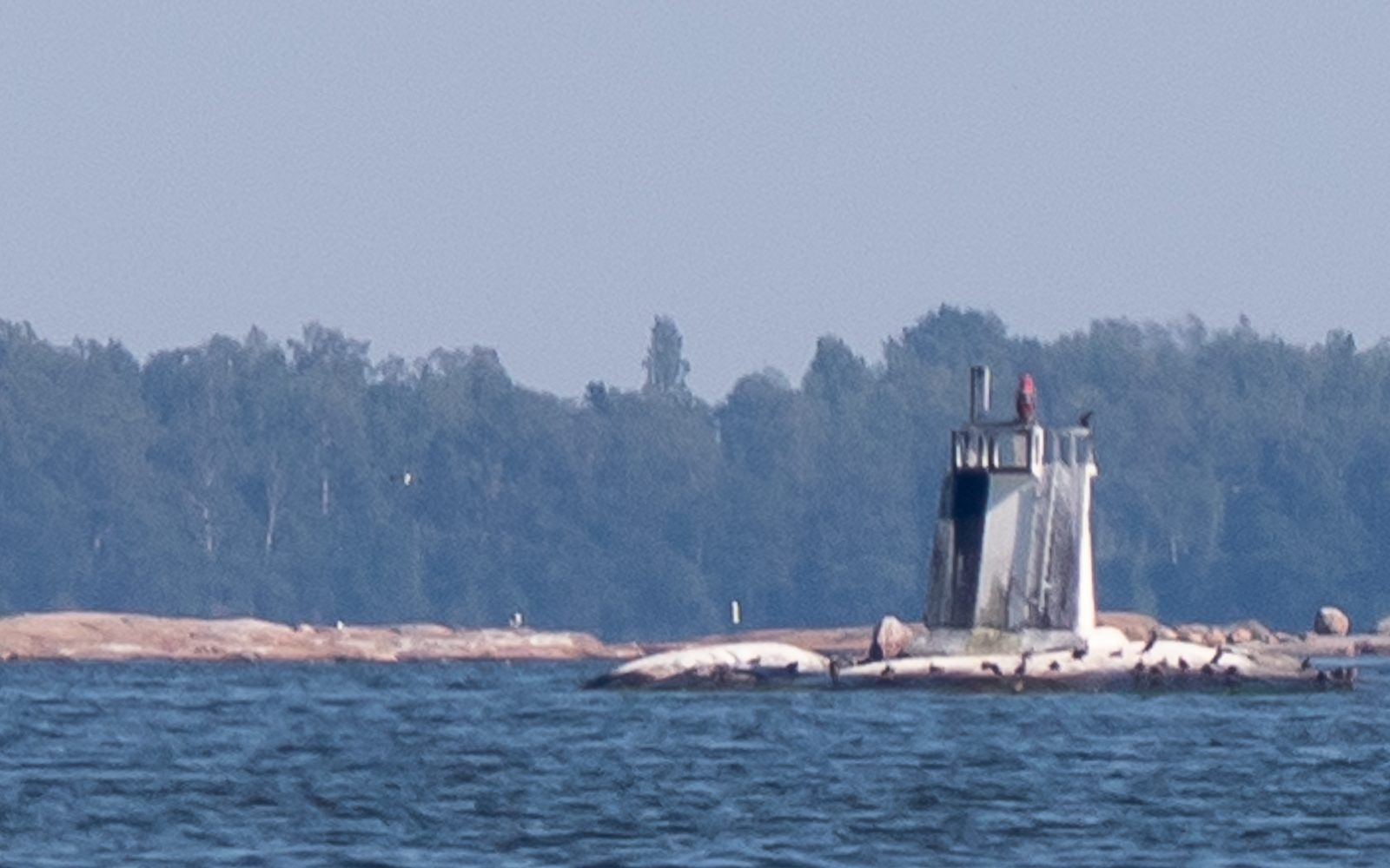 Lokkiluoto Pihlajasaari