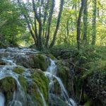 Plitvicen luonnonpuisto – Kroatian helmi?
