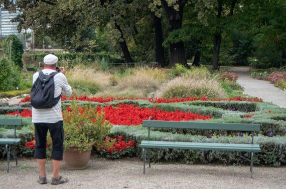 Zagreb kasvitieteellinen puutarha