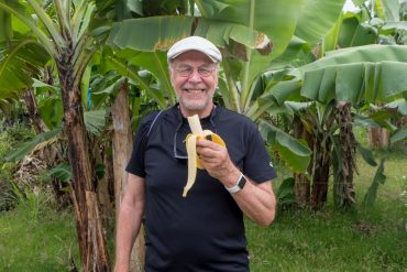 Saint Lucia banaanit
